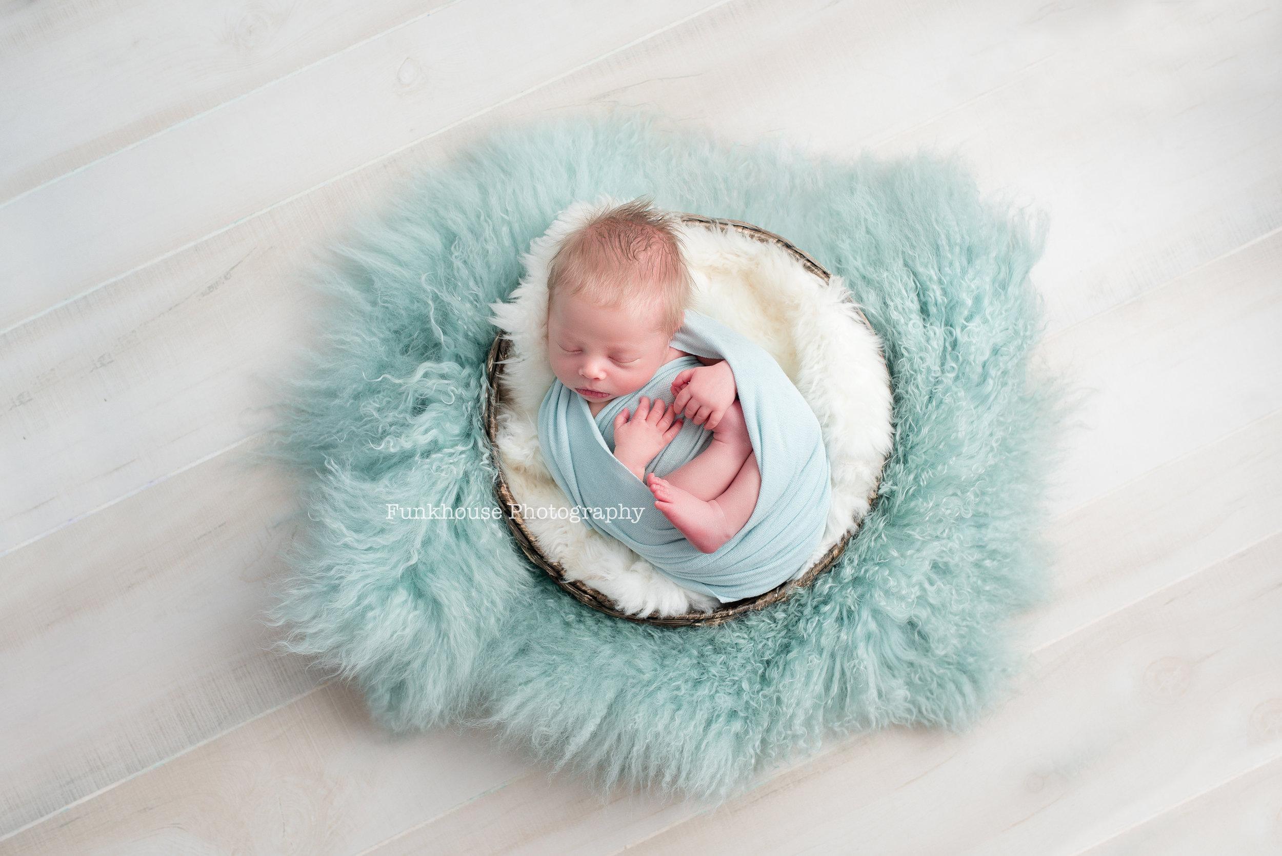 circle newborn fb.jpg