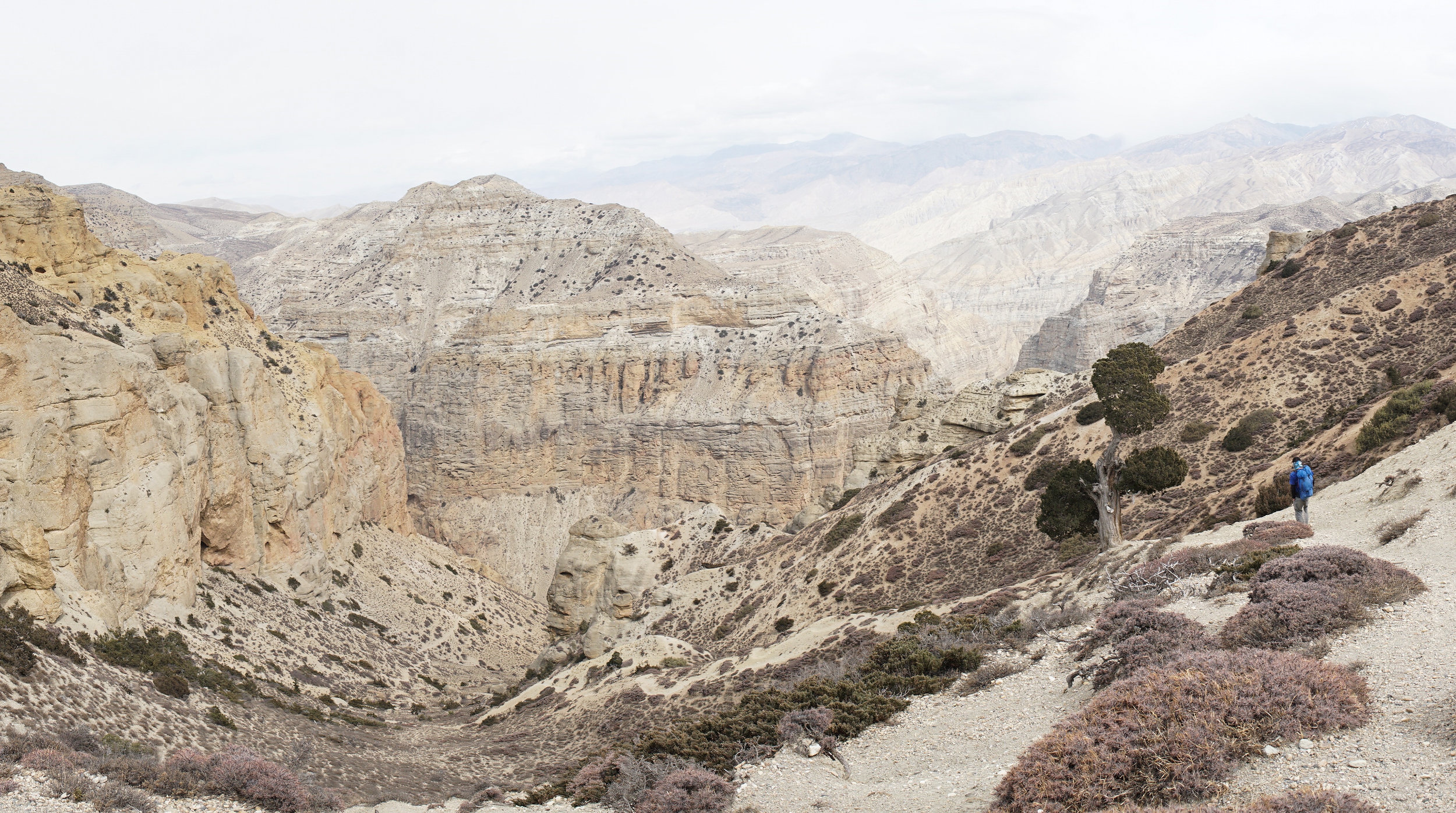 3 Mustang Landscape Photography