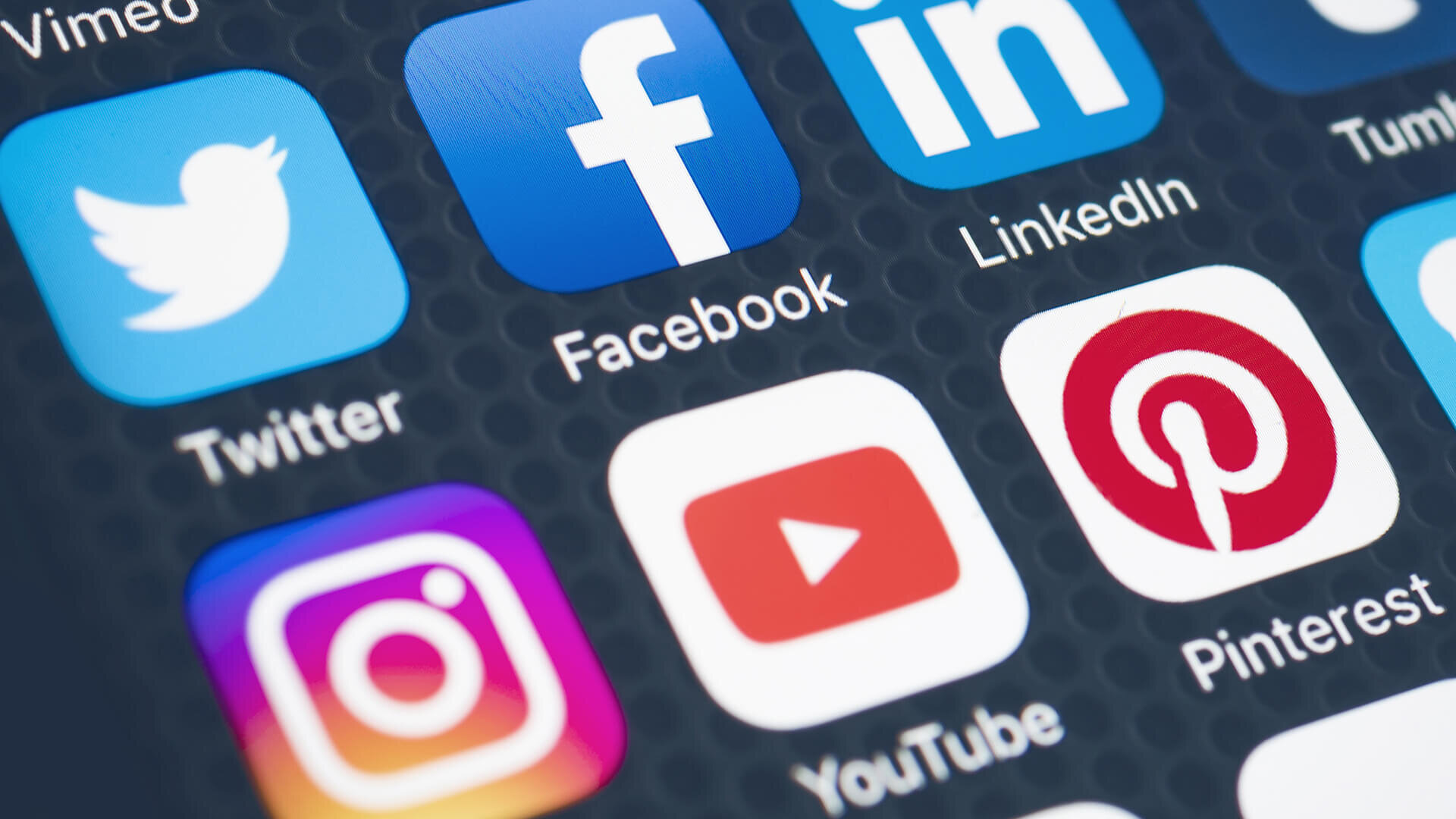 WHAT WE DO - Social media is a living organism