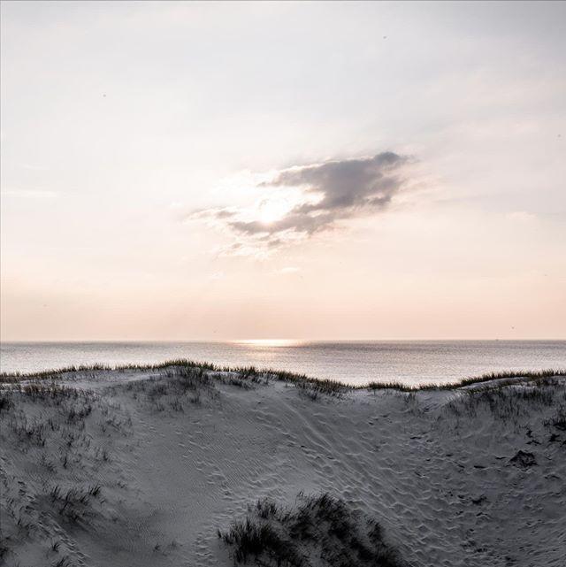 Another pic from our wonderful week at the Danish coast in May. The light here was magical.   #denmark  #scandinavia #danishnature #dänemark #northsea #atthebeach #visitdenmark #naturephotography #landscapesofscandinavia #skandinavien #natureporn #ammeer