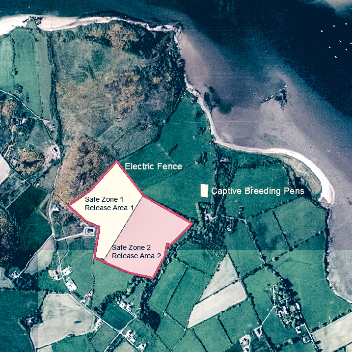 Inch Island Partridge project components map croped.jpg