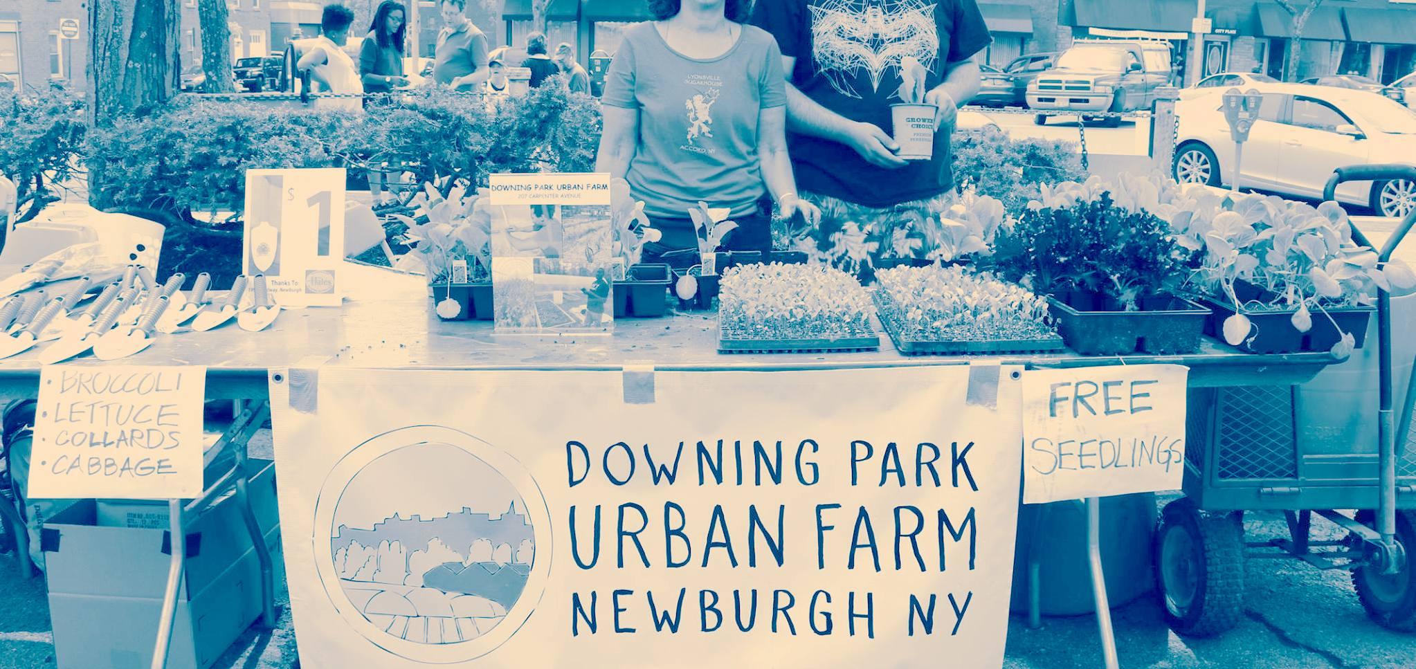 Community Day at the Farm -- Saturday June 17 1-3 pm -