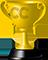 leaderboard_trophy.png