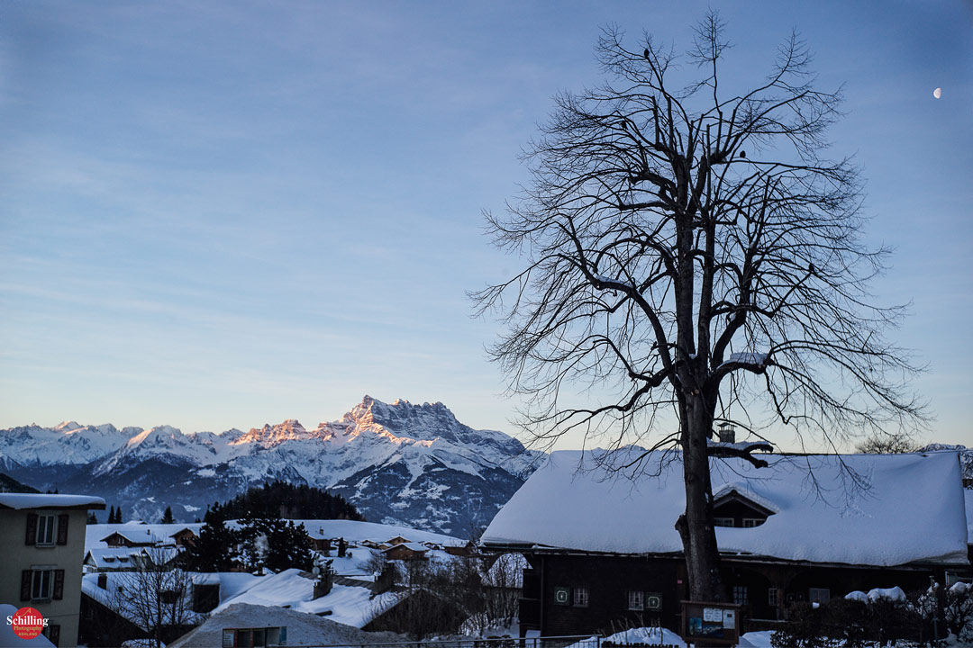 Les-Dents-Du-Midi-And-The-Tilia-First-Light-Leysin.jpg