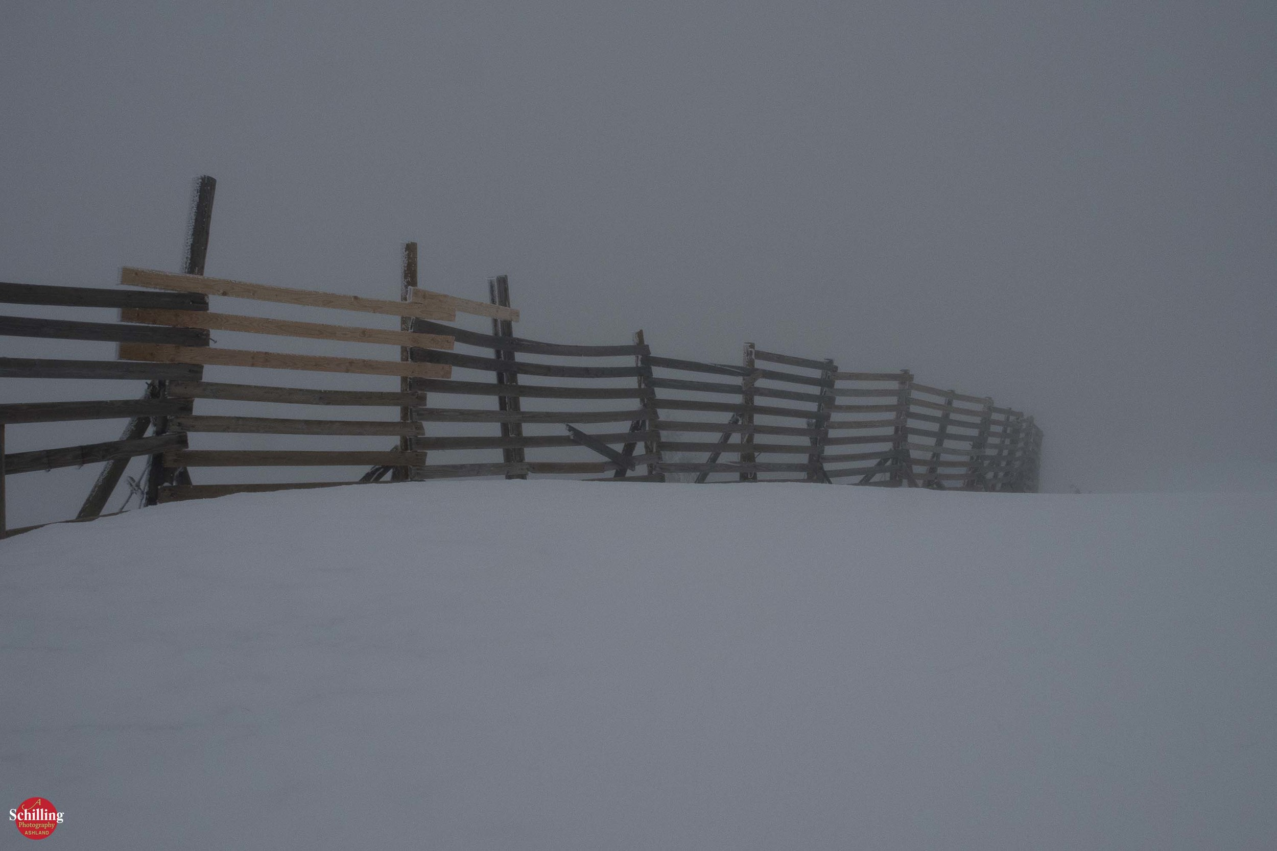 Dream Snow Fence