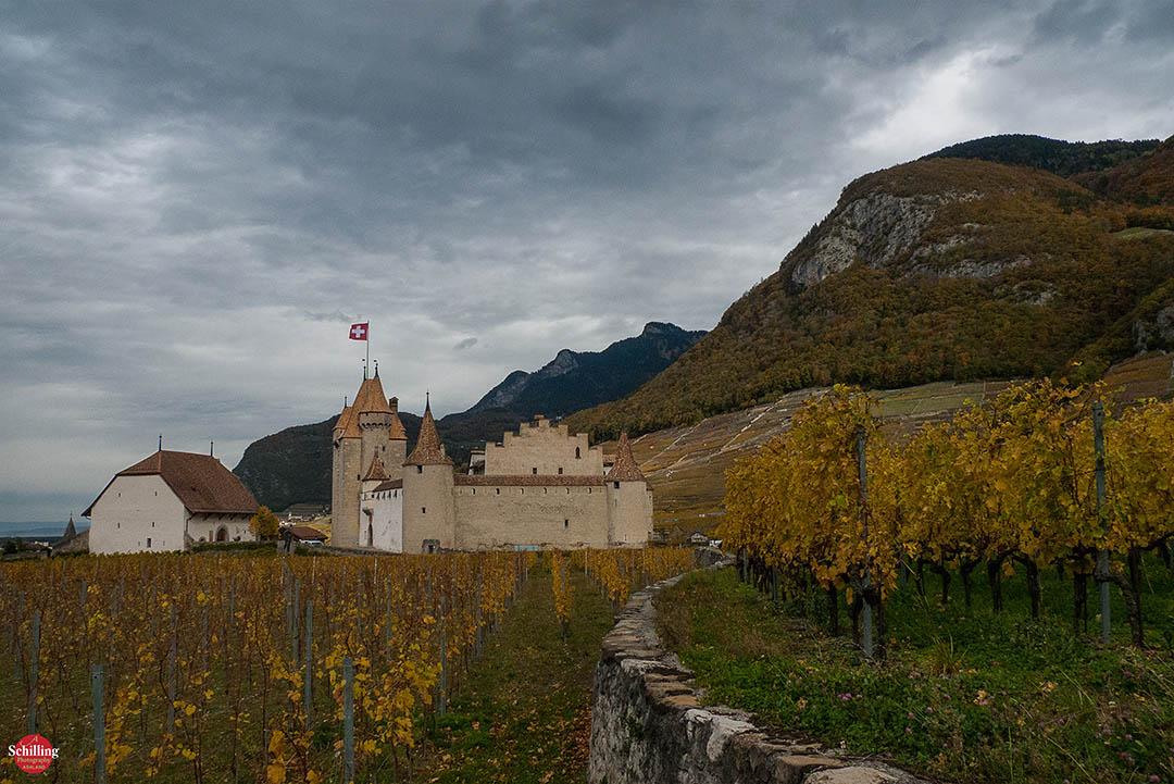Château D'Aigle Et Les Vignes 2