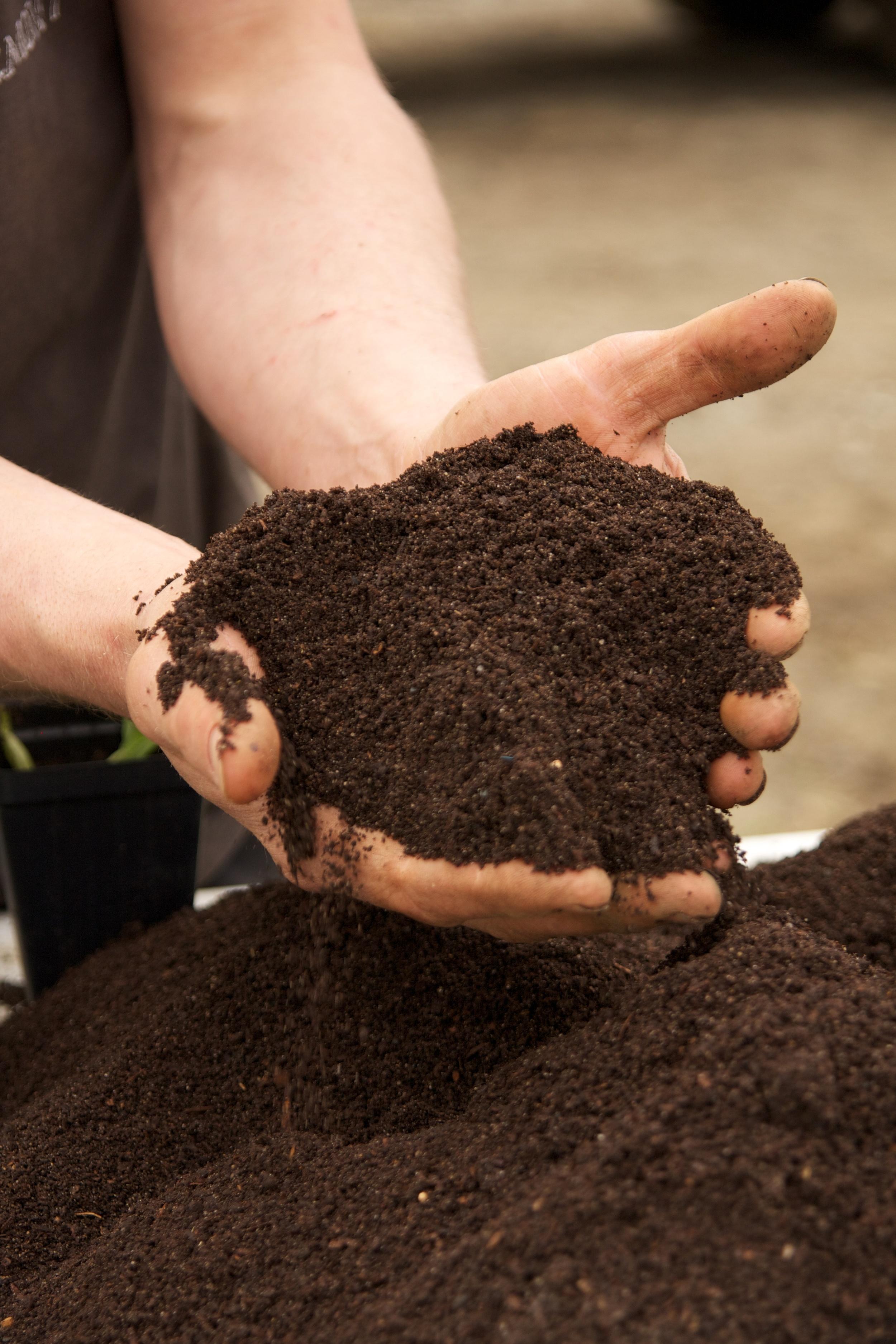 black dirt farm 050115 447.jpg