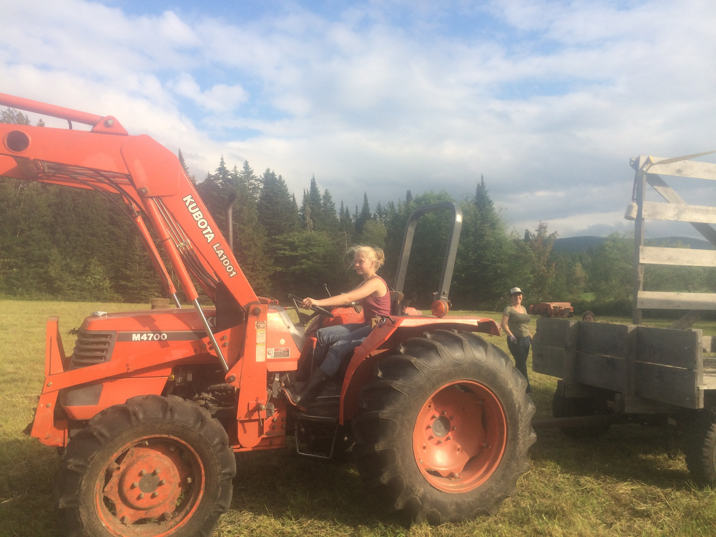 kai driving the hay wagon