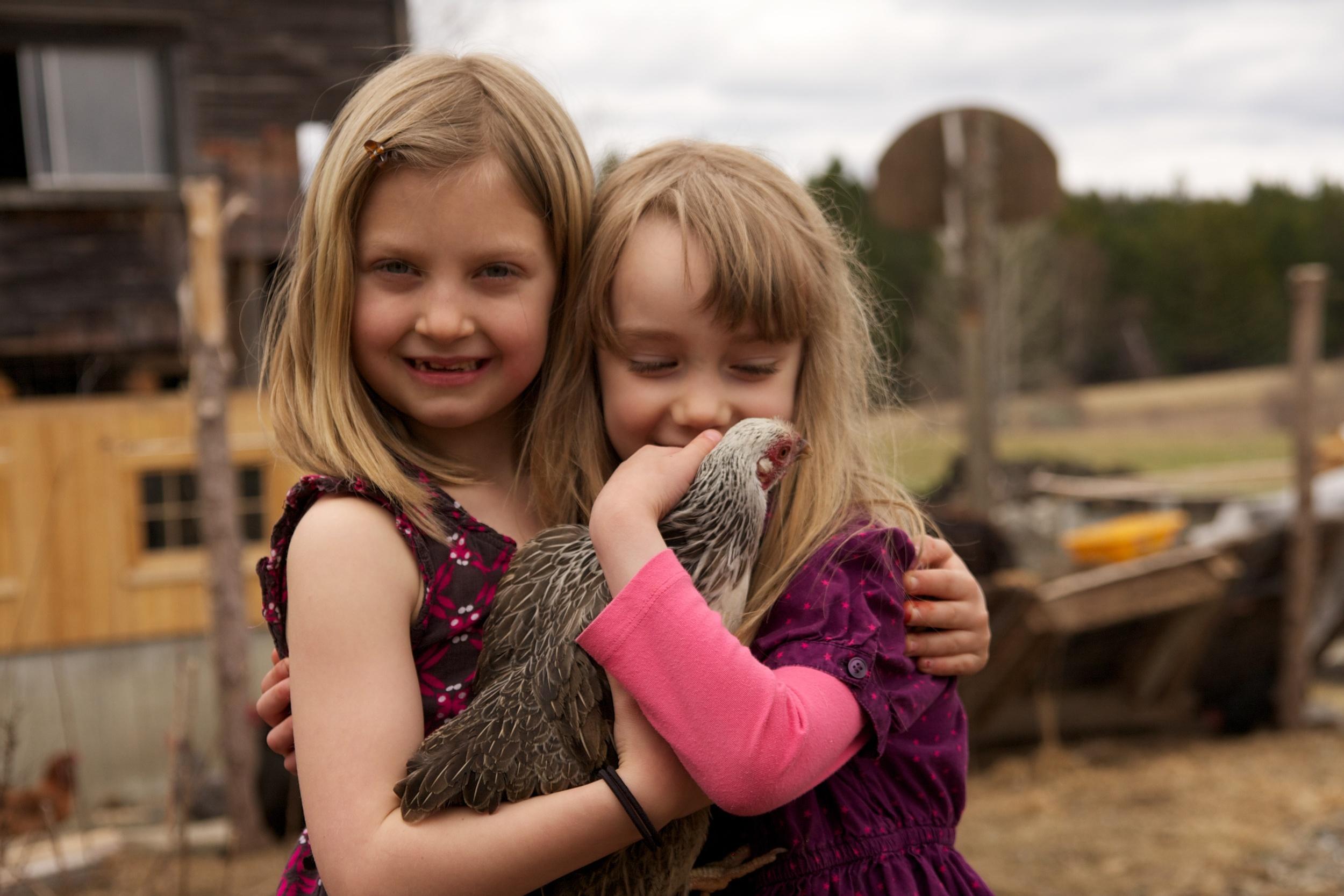 thea & Mae in the chicken run