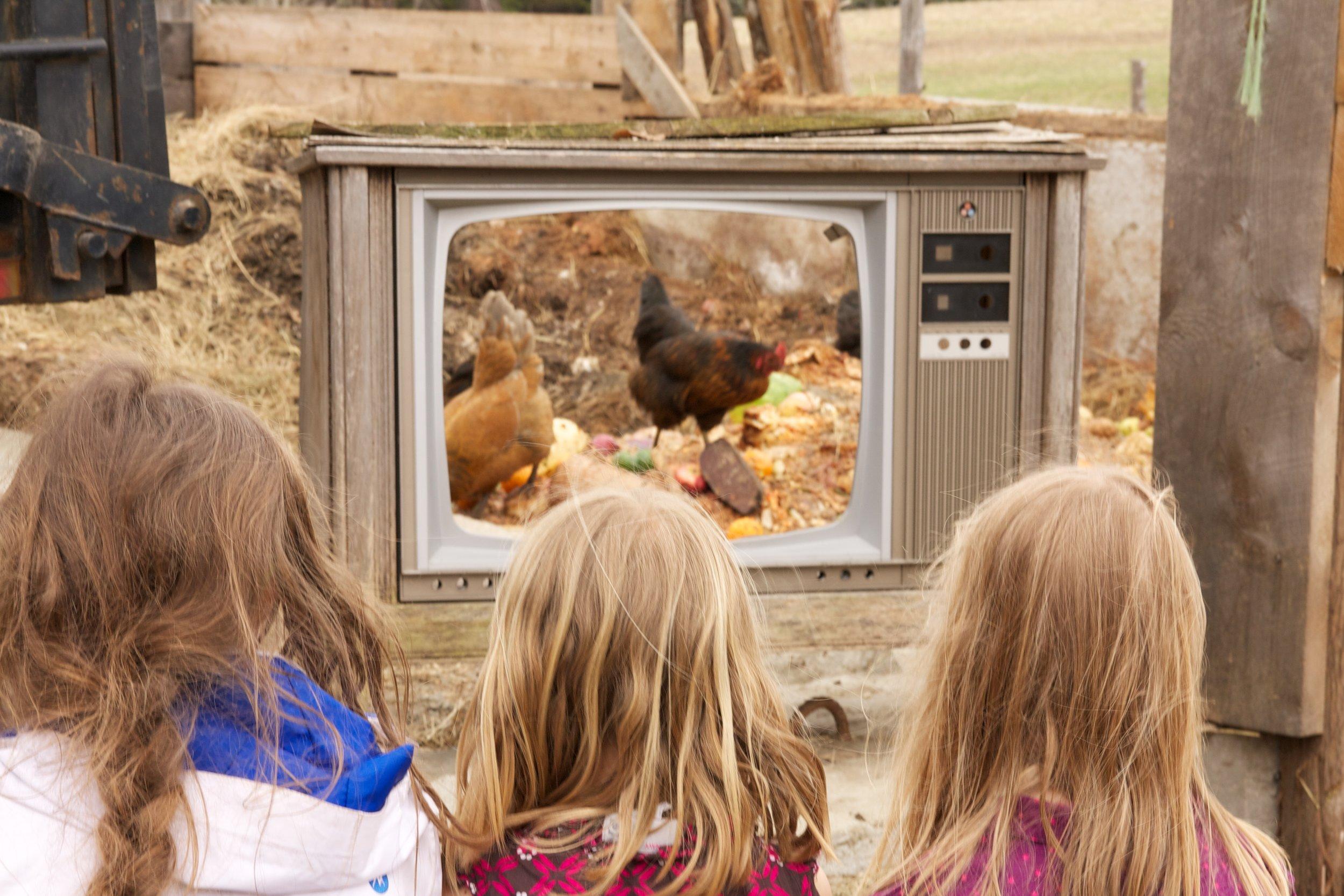 farm tv copy.jpg