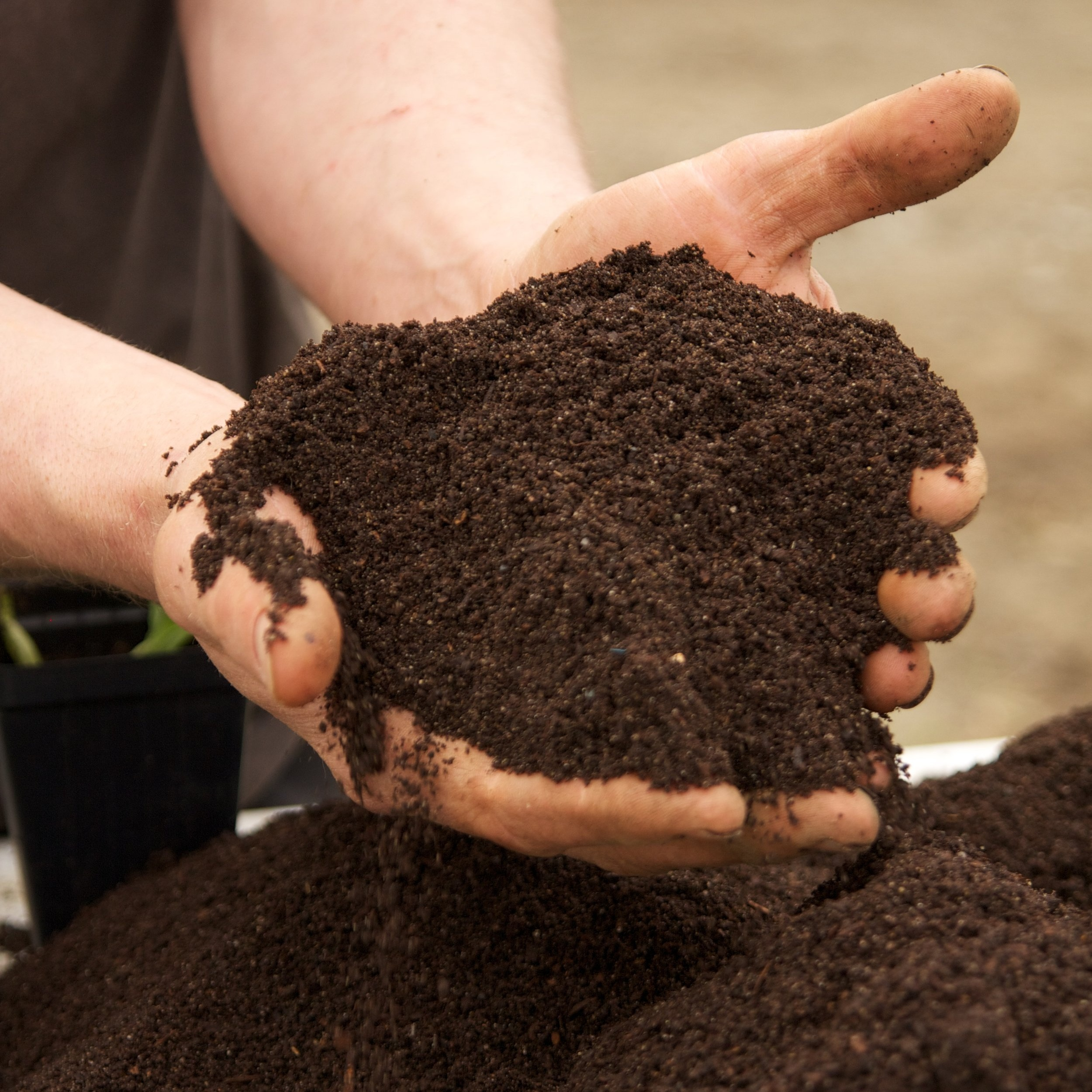 black+dirt+farm+050115+447.jpg