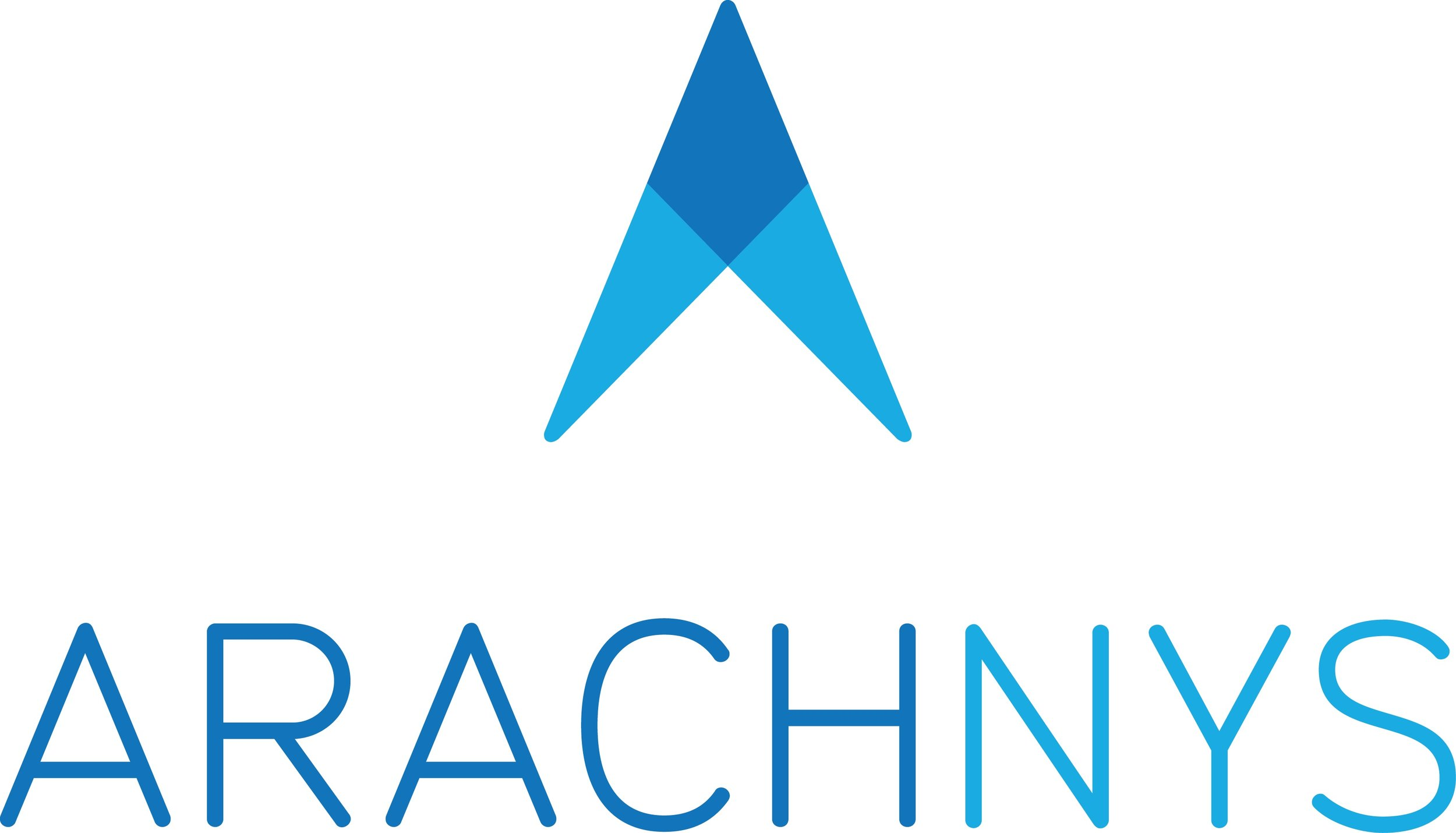 Arachnys - Primary White Background RGB.jpg