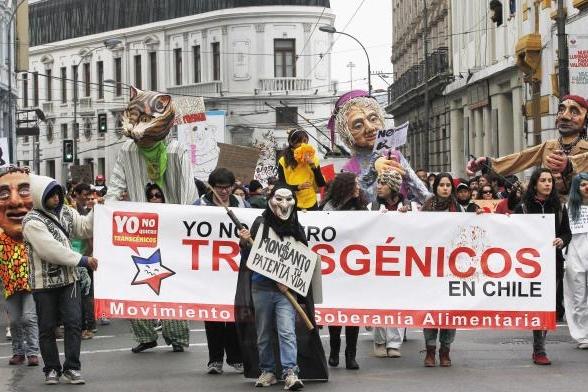 march-against-monsanto-valparaiso-chile-1a