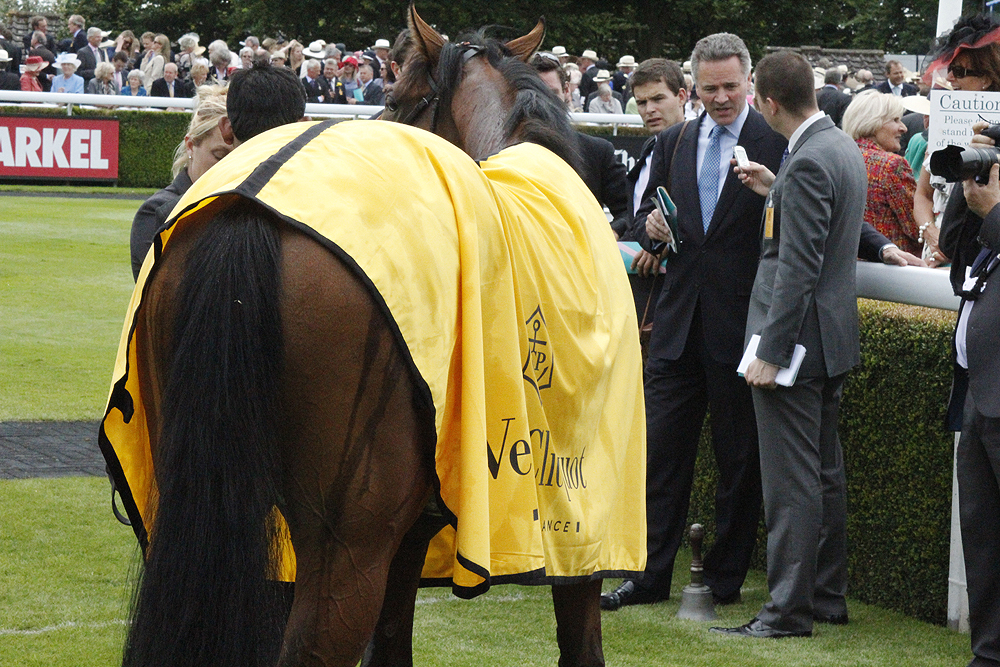 Glorious Goodwood Vintage Stakes Winning Horse.png
