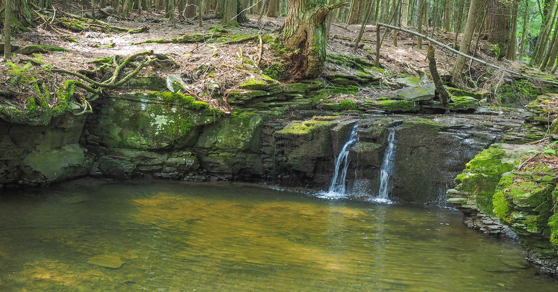 This waterfall and pool are worth a stop along ten mile creek.  Photo by Alan Via