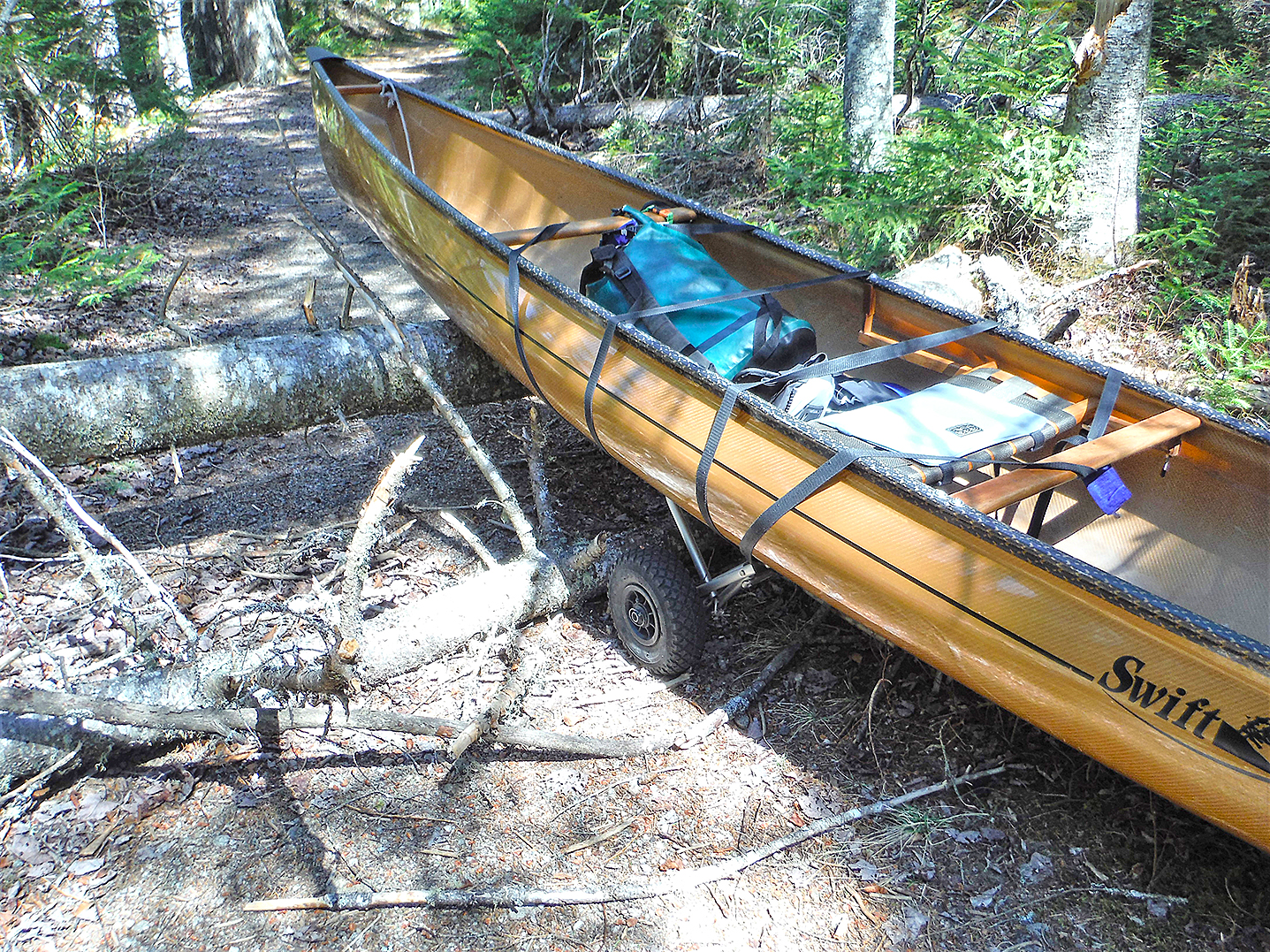 Blowdown on the Marion River carry trail with the cart attached.  Rich Macha