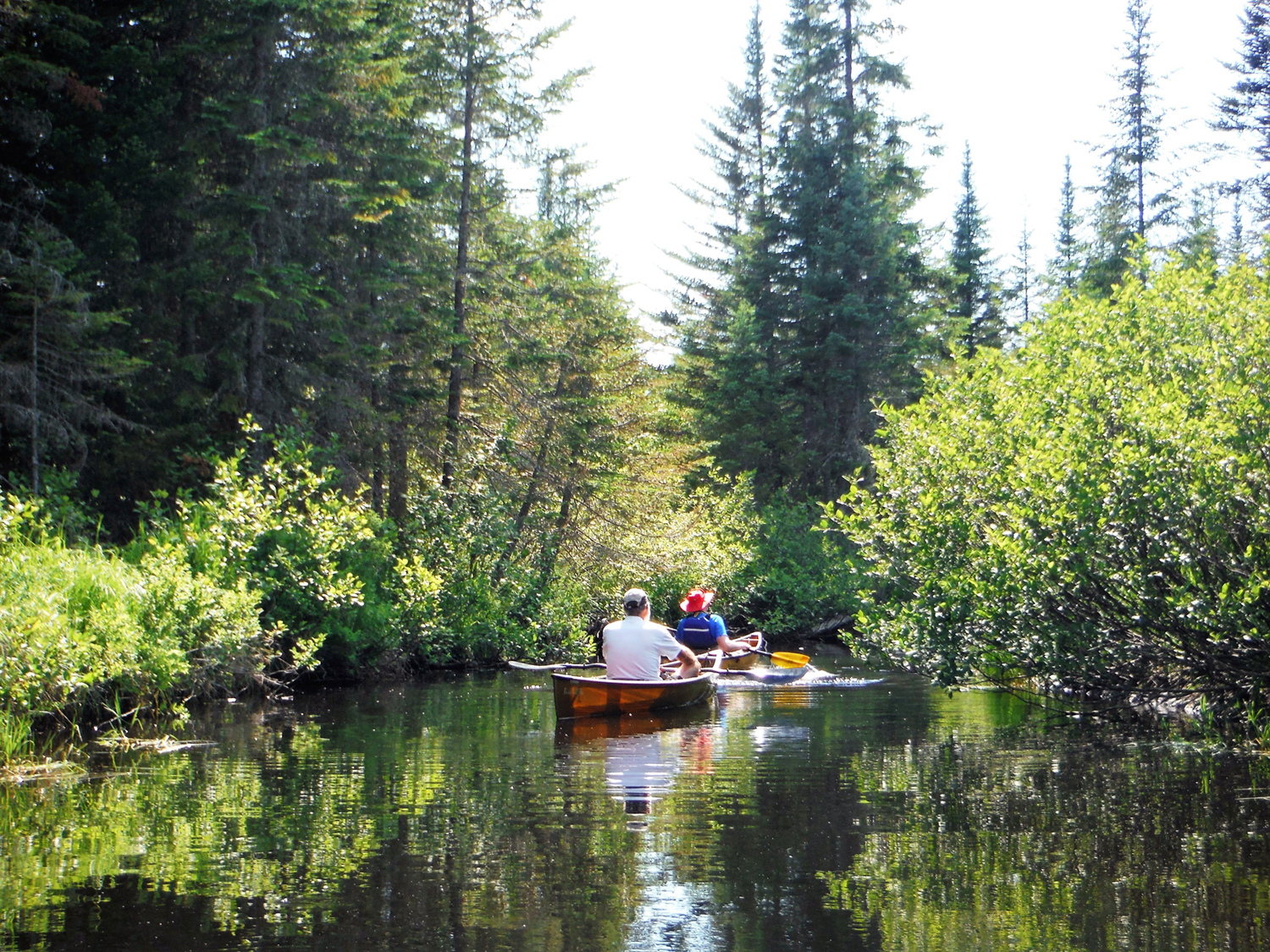 Heading back to Lake Lila on Shingle Shanty Brook.  Rich Macha