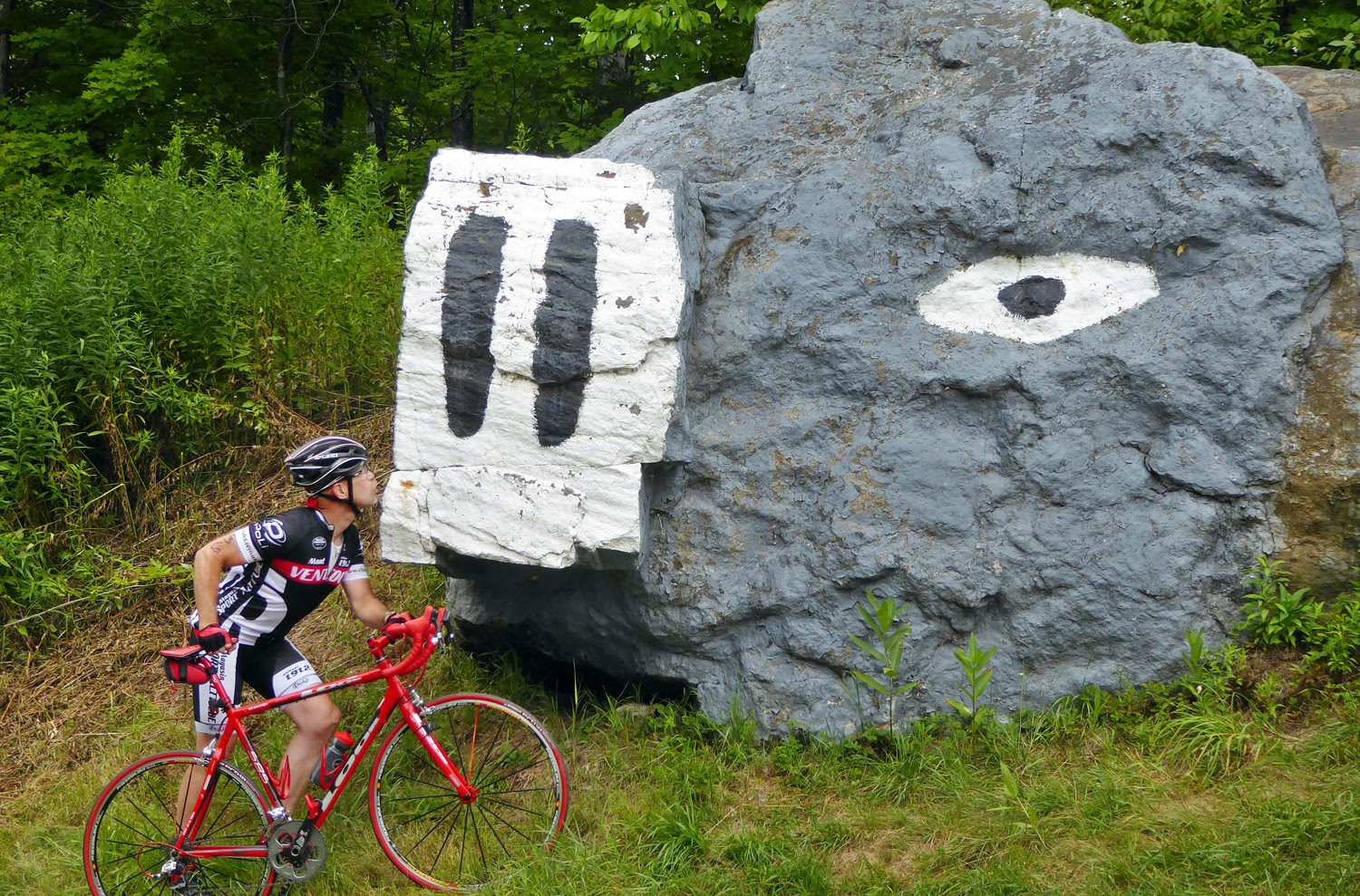 There's nothing like stopping to kiss the big stone pig on Route 30 north of Speculator.   Copyright by Dave Kraus/ Krausgrafik.com