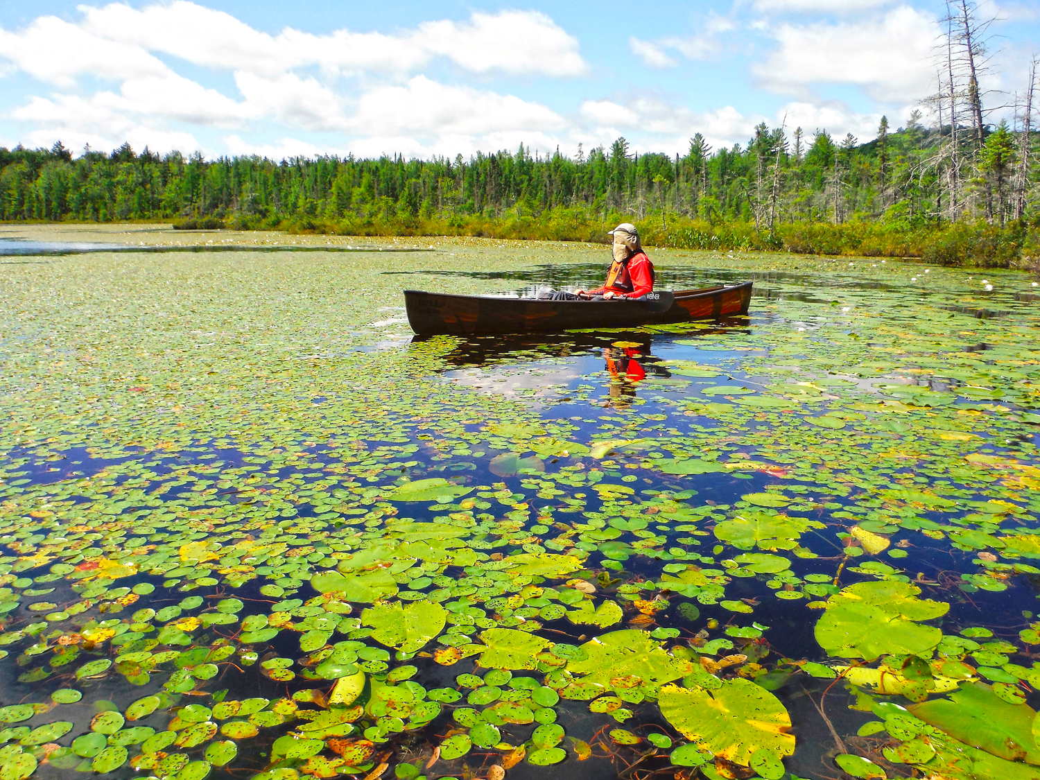 """Mud lake did not live up to its name; it's more like """"Lily Pond.""""  Rich Macha"""