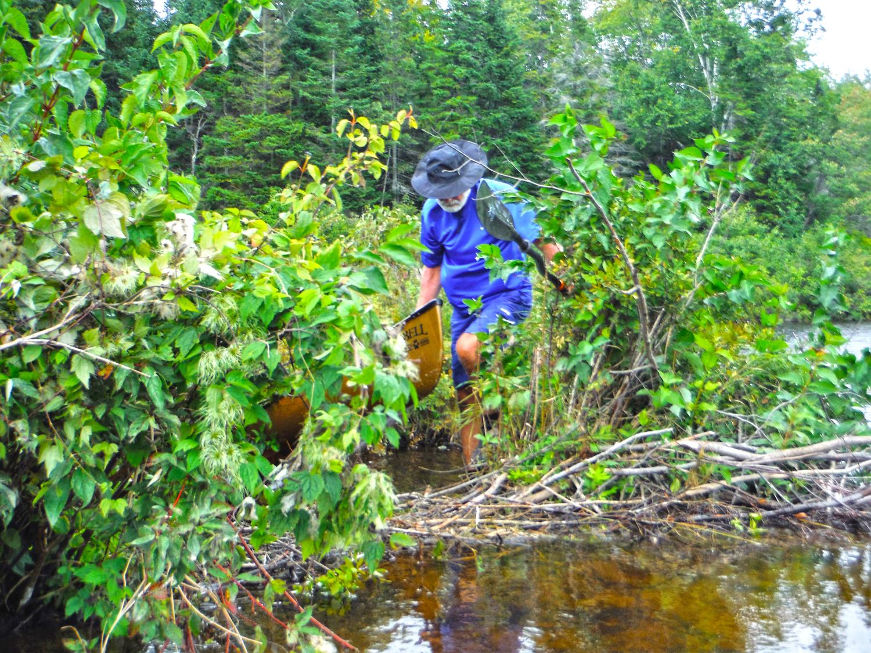 Steve Burke of Albany lifting over a Beaver dam on the Kunjamuk.  Rich Macha