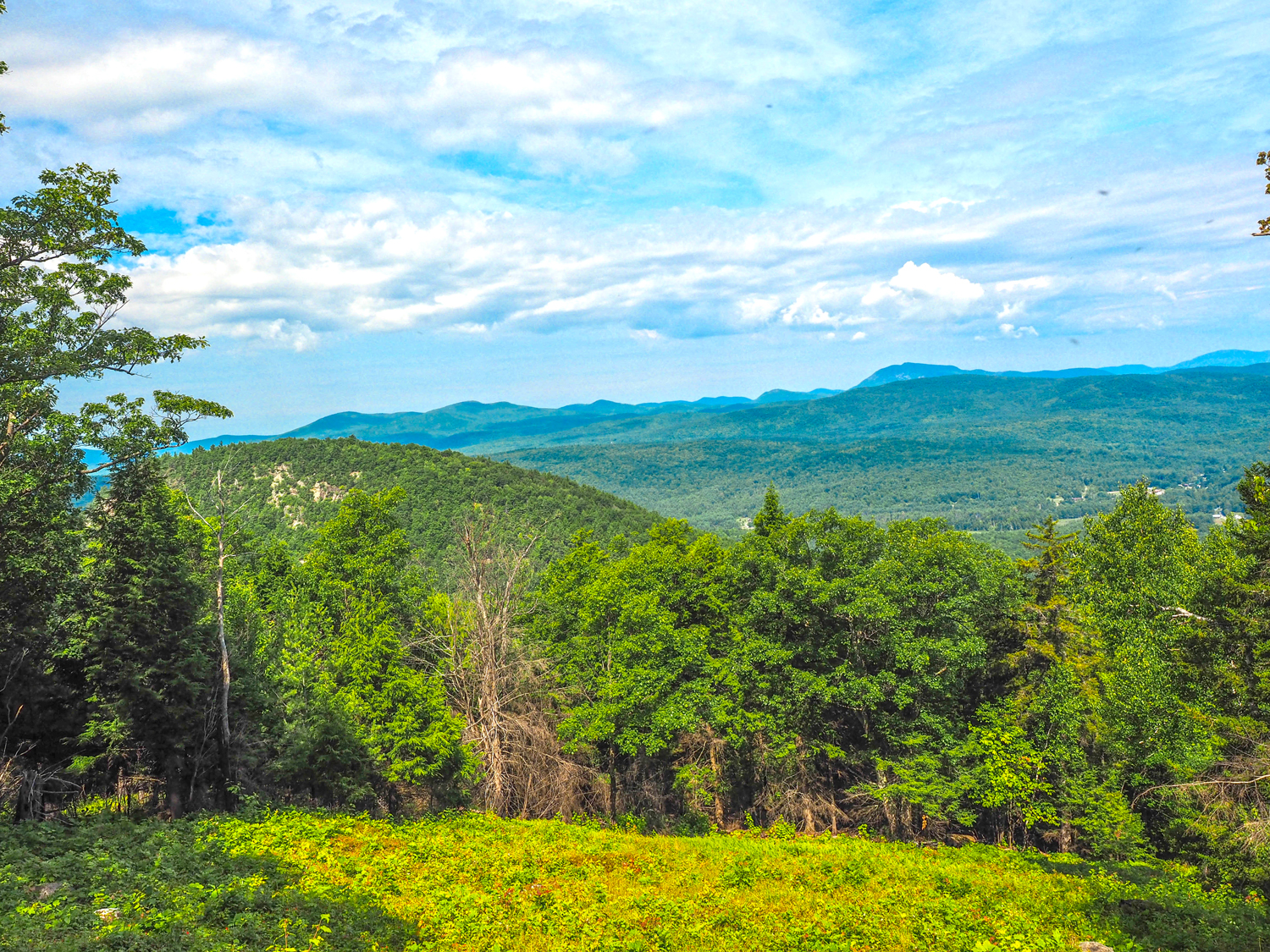 View of Three Sisters from Pine mountain.   Alan Via