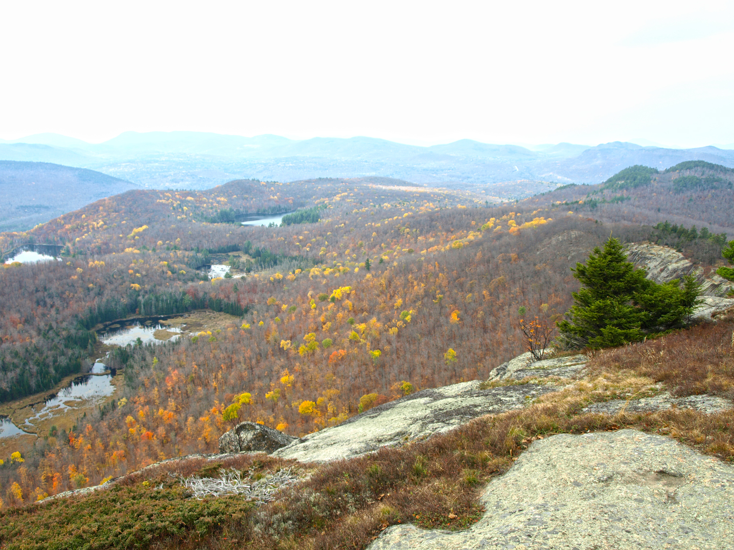 Water and woods from summit   of Moxham Mountain.   Alan Via