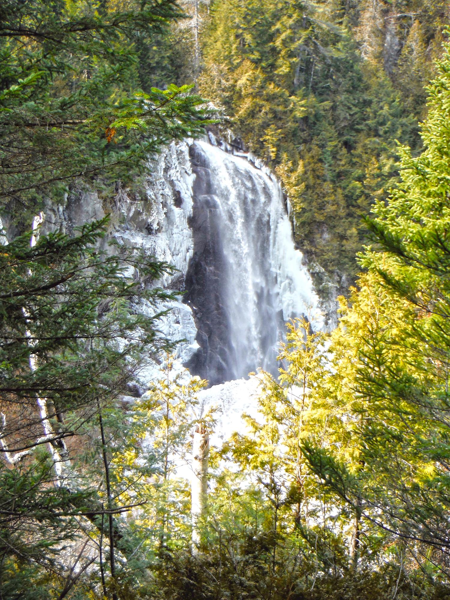 OK Slip Falls late   last winter.   Rich Macha
