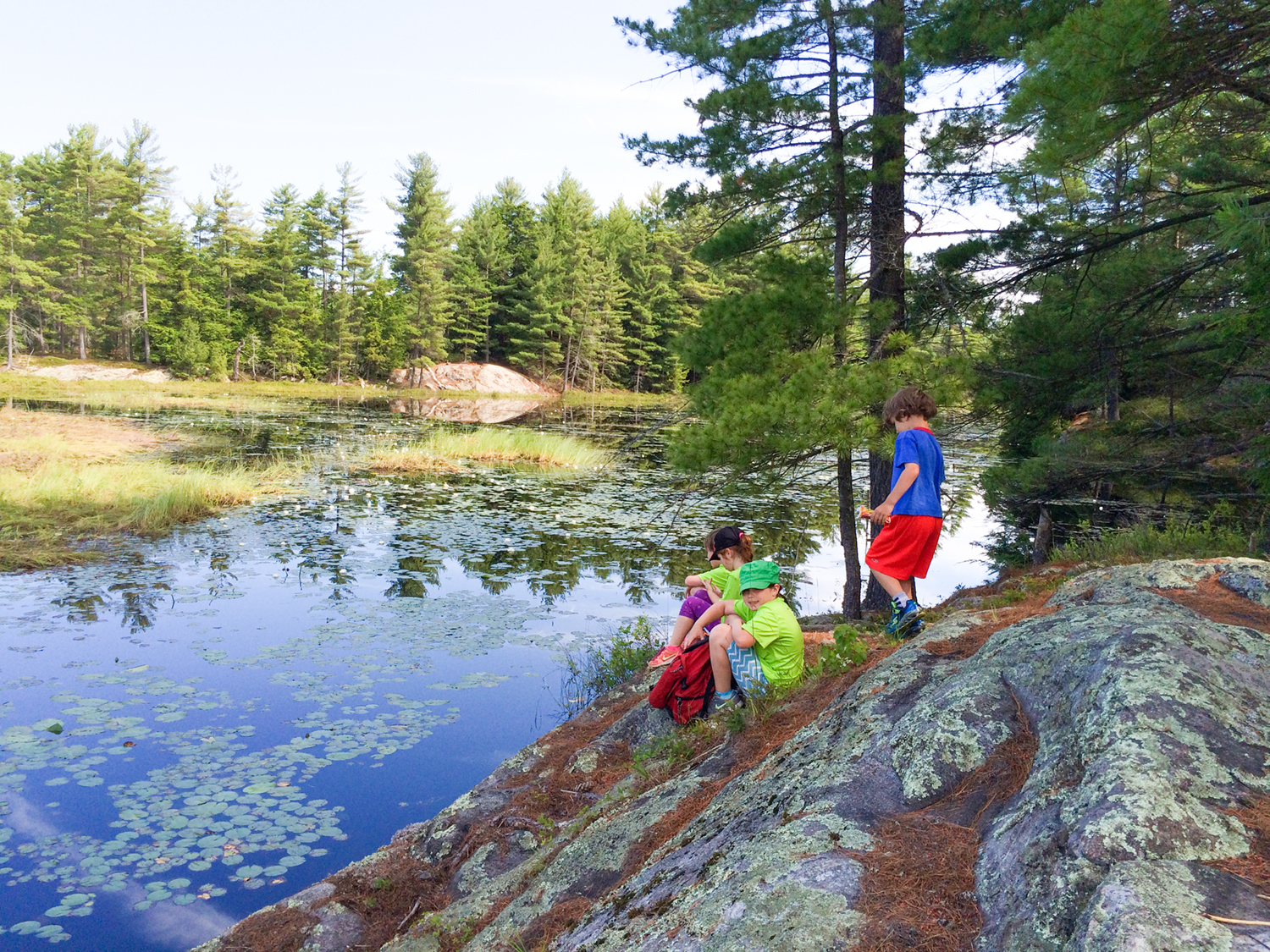 Kids take a break to examine the beaver pond at Amy's Park during the 2016 Hike-A-Thon.   Sarah Hoffman