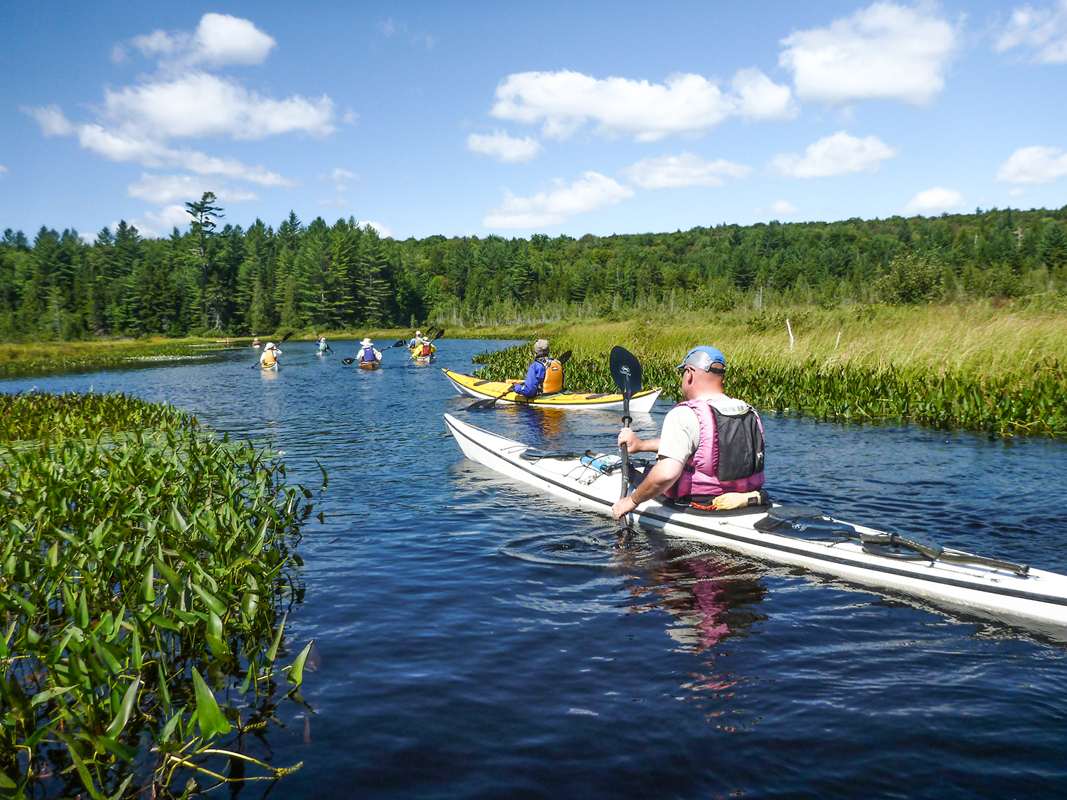 Raquette Lake's South Inlet with bog mat on the sides - Lucian Kowalski of Virginia in the foreground.   Alan Mapes
