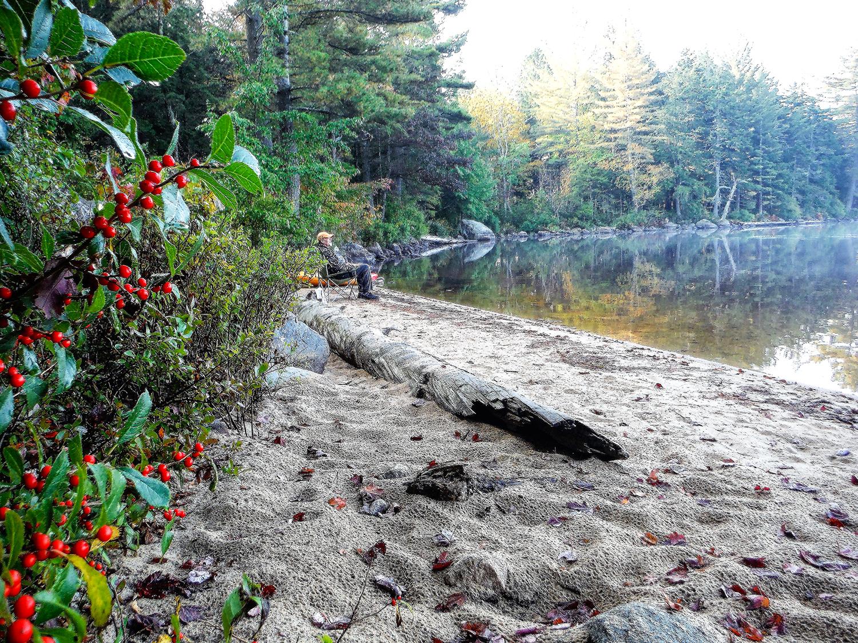 The beach at campsite #3.   Rich Macha