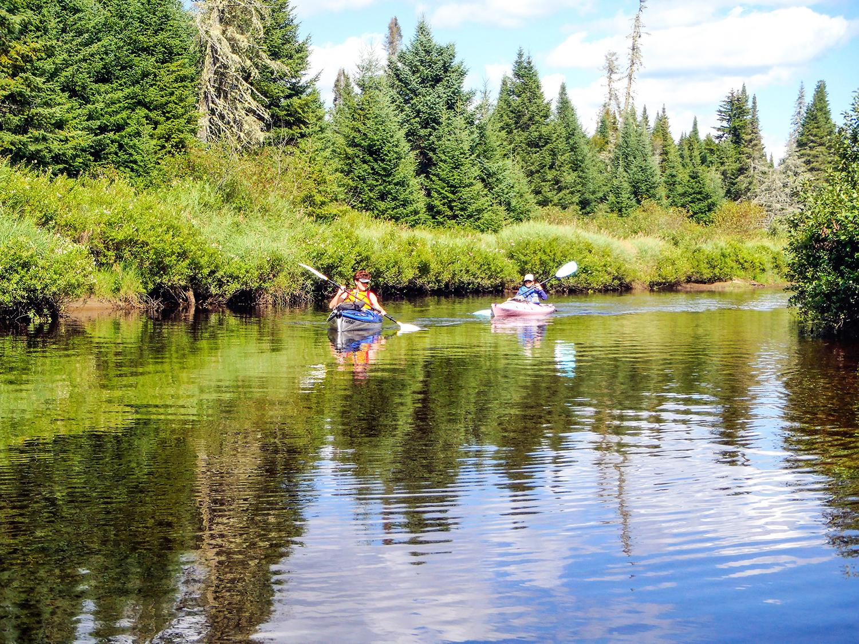 The Cedar River.   Rich Macha