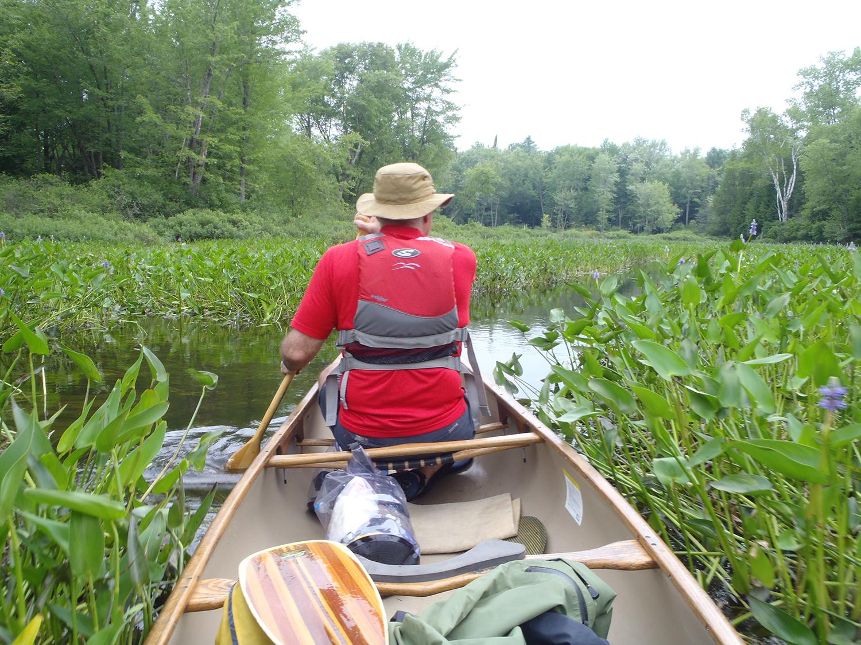 Exploring Alder Creek.   Rich Macha