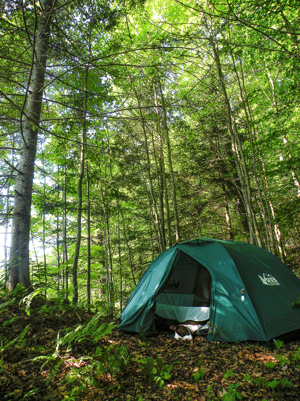 Clear Pond Campsite.  Bill Ingersoll