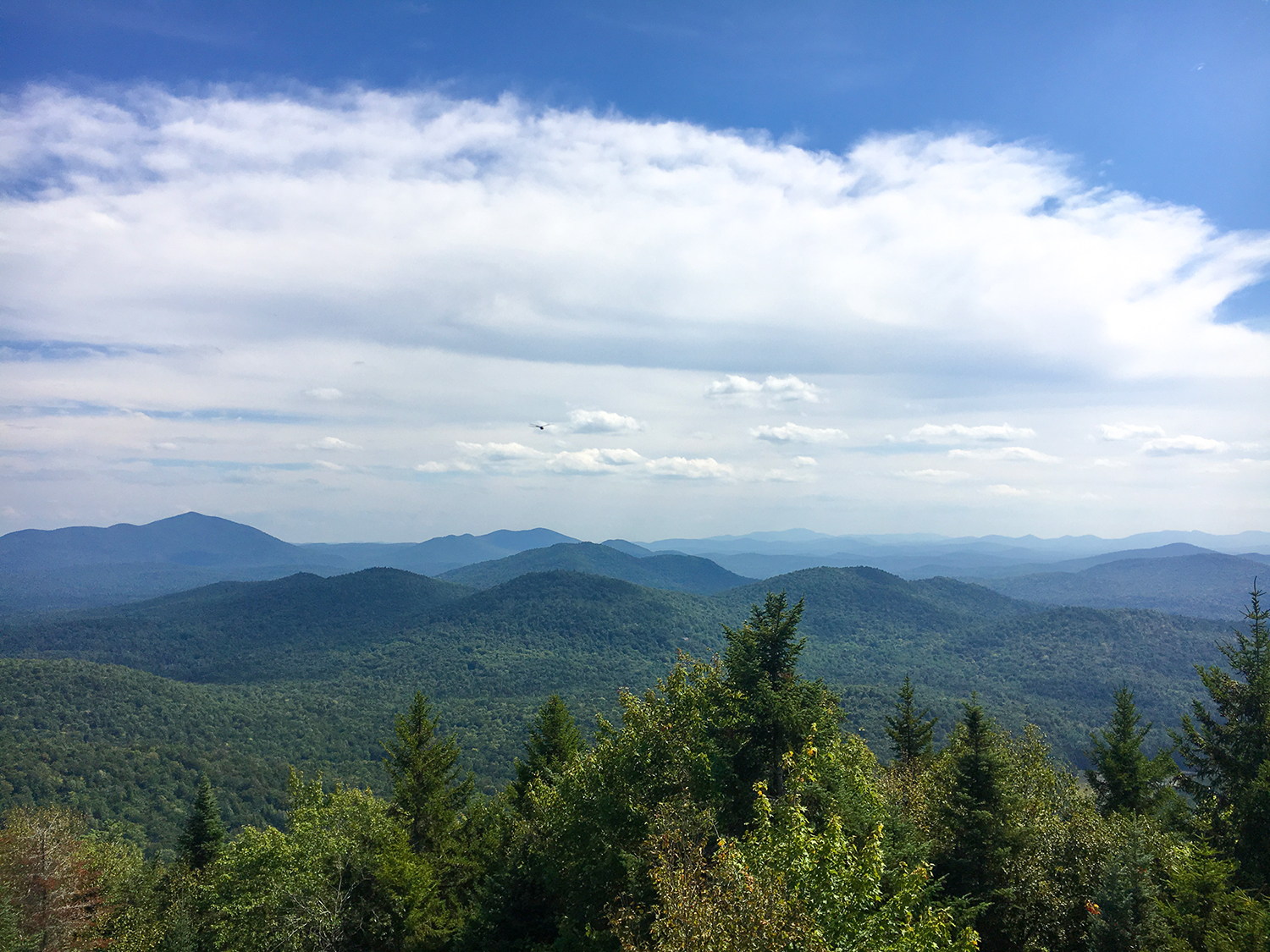 Southeast from Goodnow Mountain.  Tom O'Grady