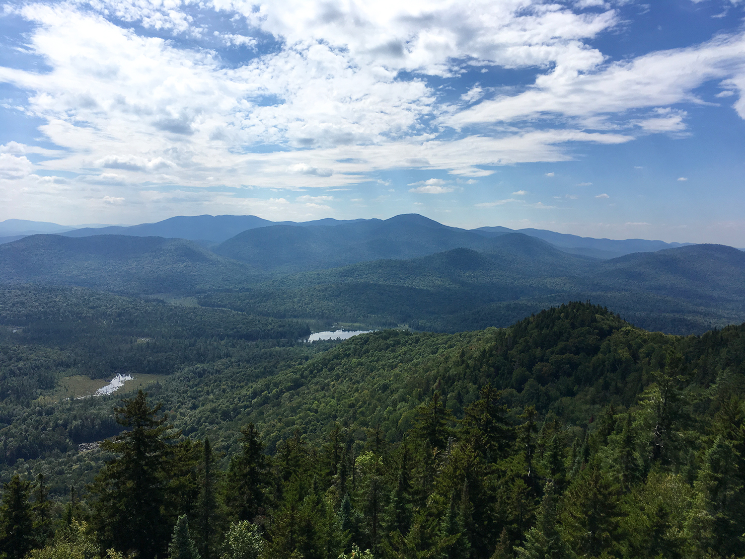 View southwest from fire tower to Goodnow Pond.  Tom O'Grady