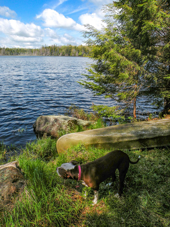 Little Woodhull Lake.  Bill Ingersoll