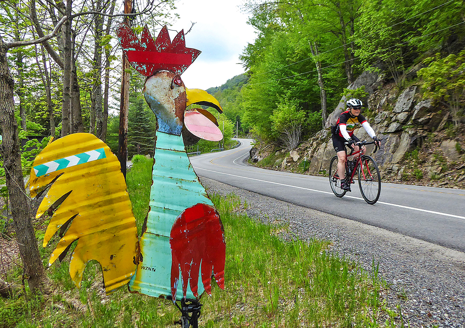 Roadside sculpture along Route 28 north of Old Forge, as Elayne Livote of Saratoga Springs passes by.  Dave Kraus/   KrausGrafik.com