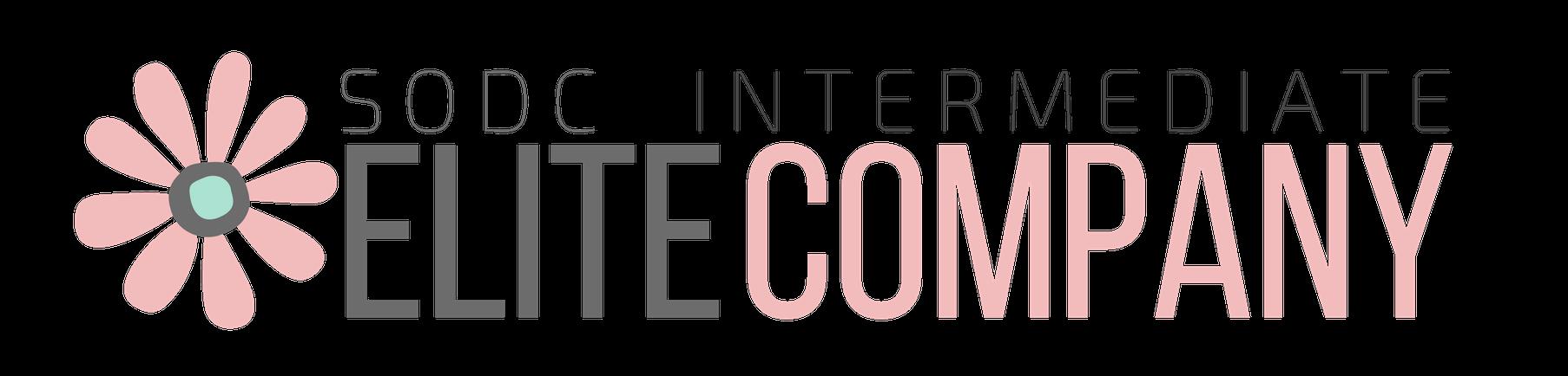 InterCompany.png