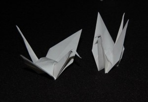 Origami Cranes made by Janine