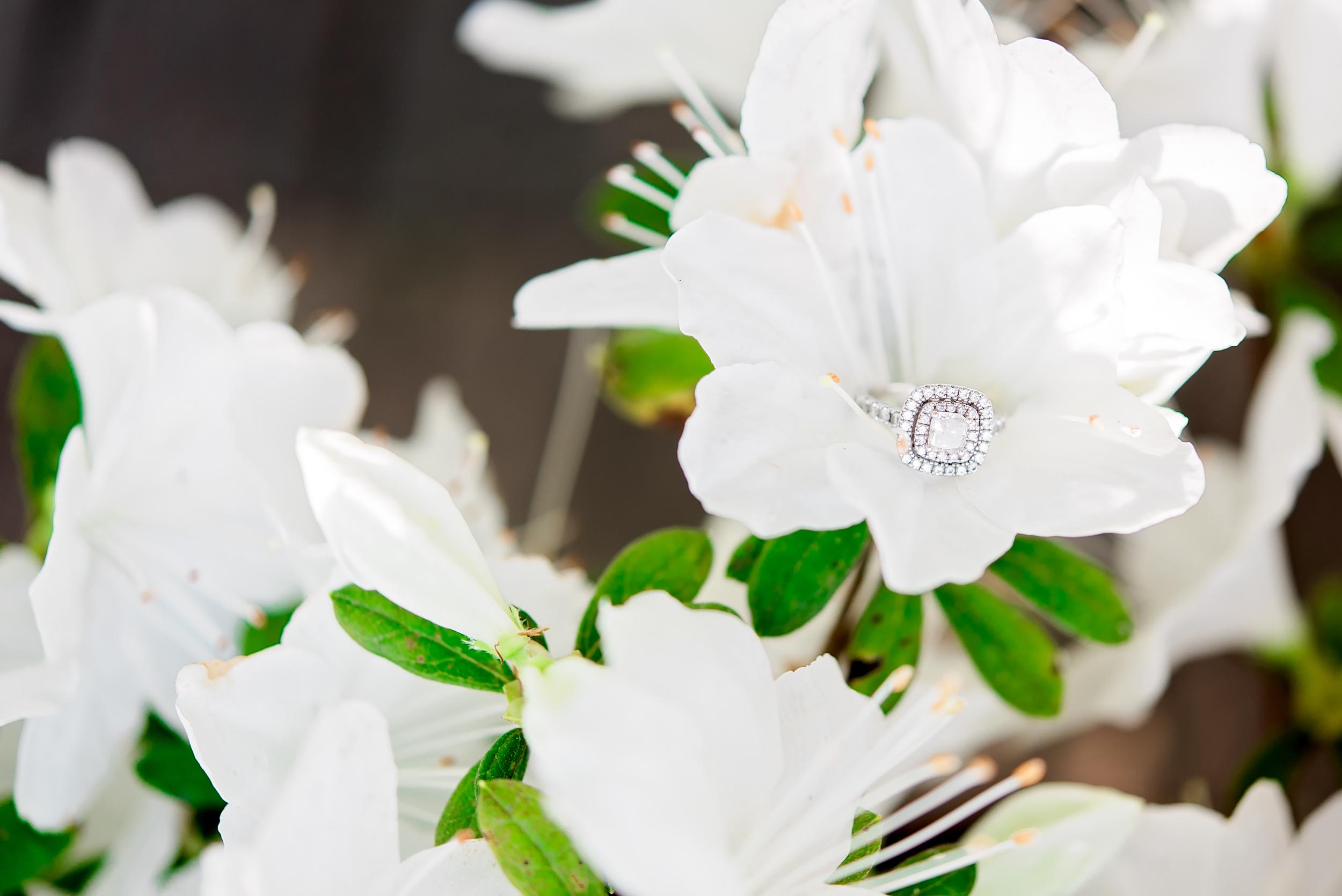 Bridal Session- Catherine- Houston Wedding- Texas Photographer- Pharris Photography- Engagement Ring