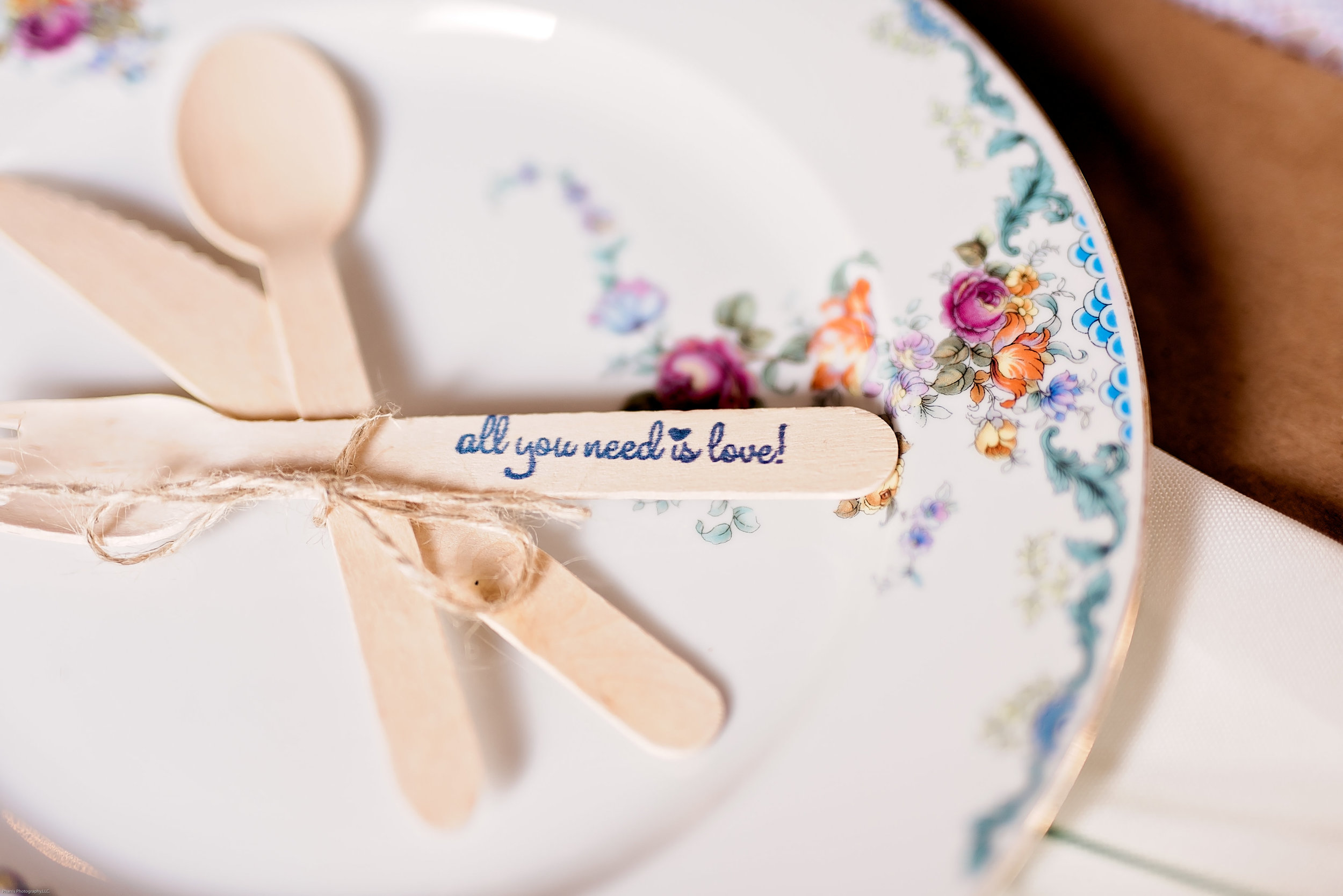 Taylor-Mallorie-Wedding-Pharris-Photos-0013.jpg