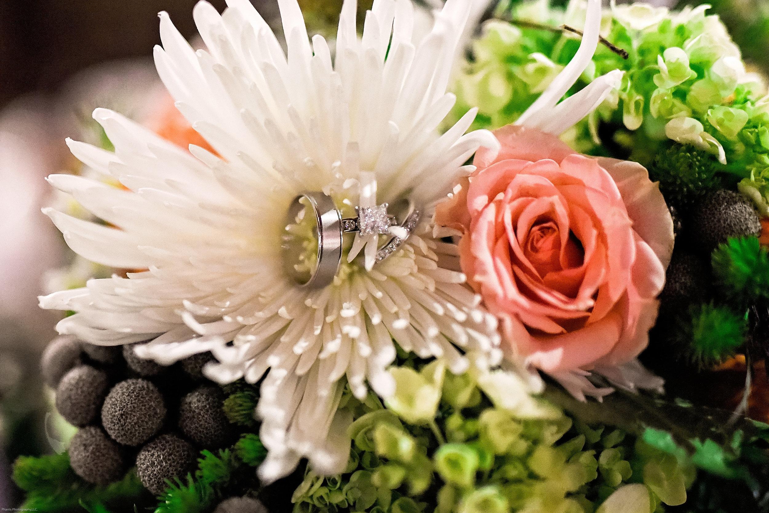 Taylor-Mallorie-Wedding-Pharris-Photos-0111.jpg