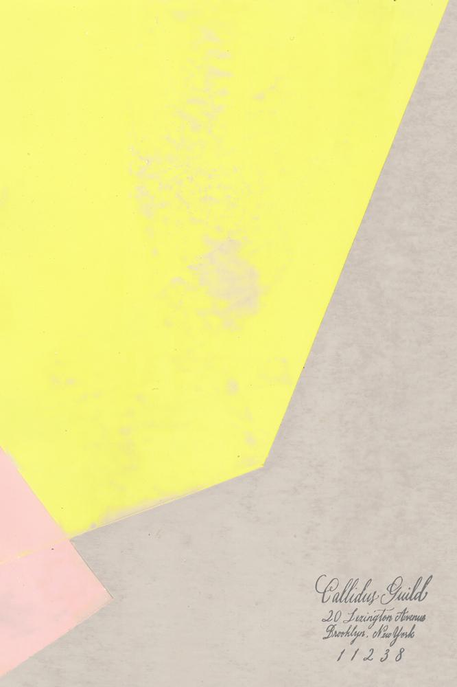 WP-1617-Aperion-Dahlia-Full.jpg