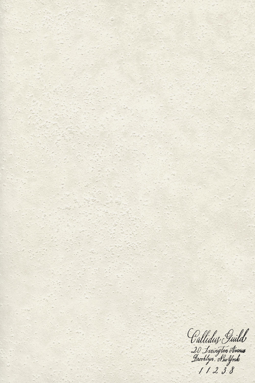 WP-1932 Silice - Ivory