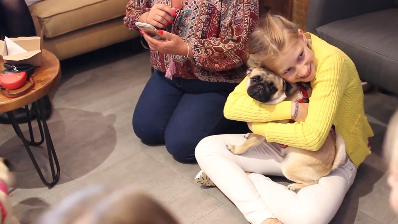 Pugs and their owners enjoying the atmosphere at the Pop Up Pug Cafe in Guildford.