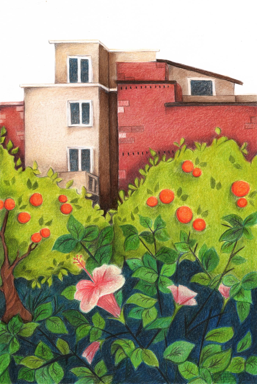 jardim-03.png