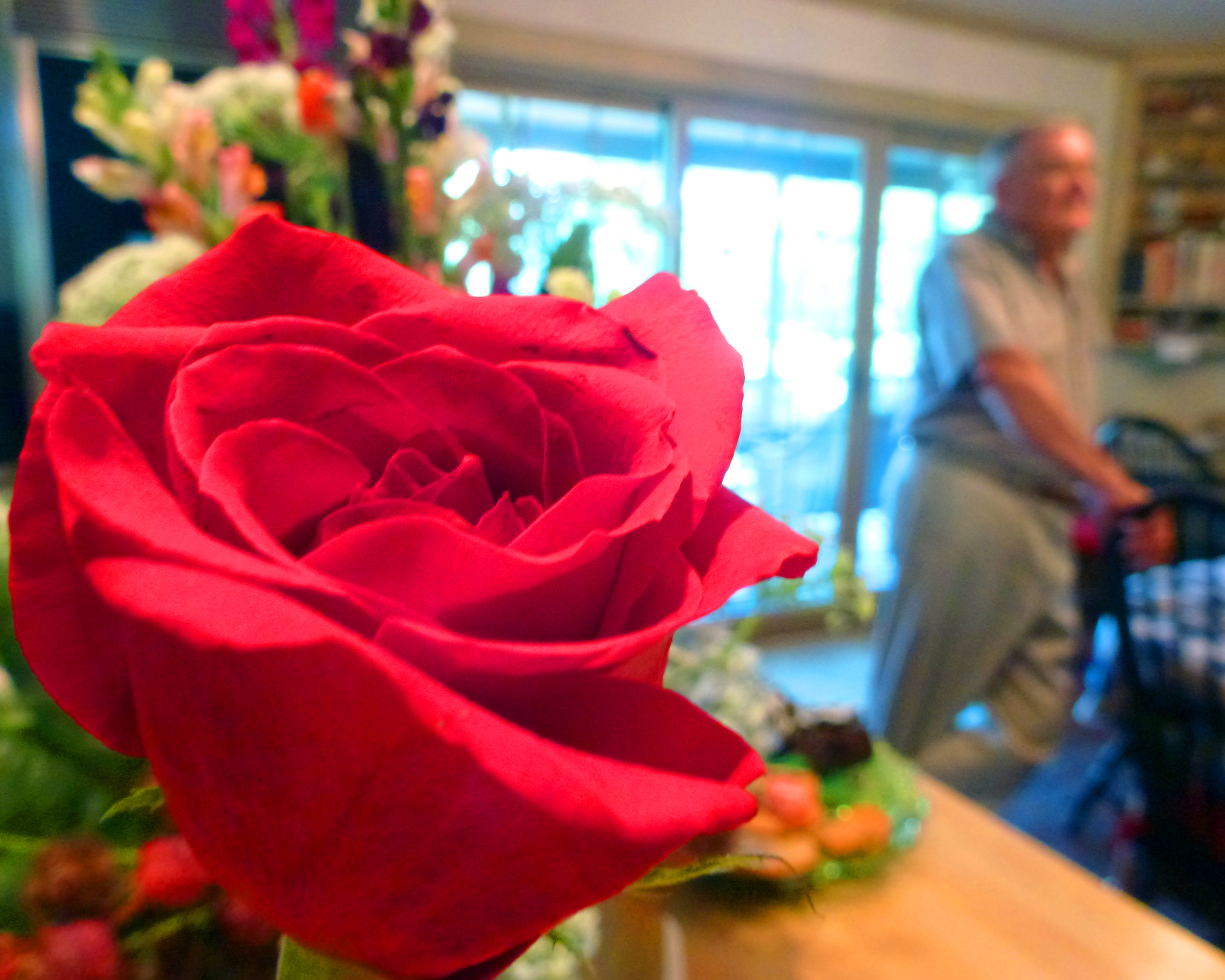 In the background Frank Huber talks about his sister, Joanne Geiger, at their farmhouse in Lancaster, Pa. Joanne was buried that morning and died four days before. In the foreground is a rose that was part of the bouquet laid on her casket.