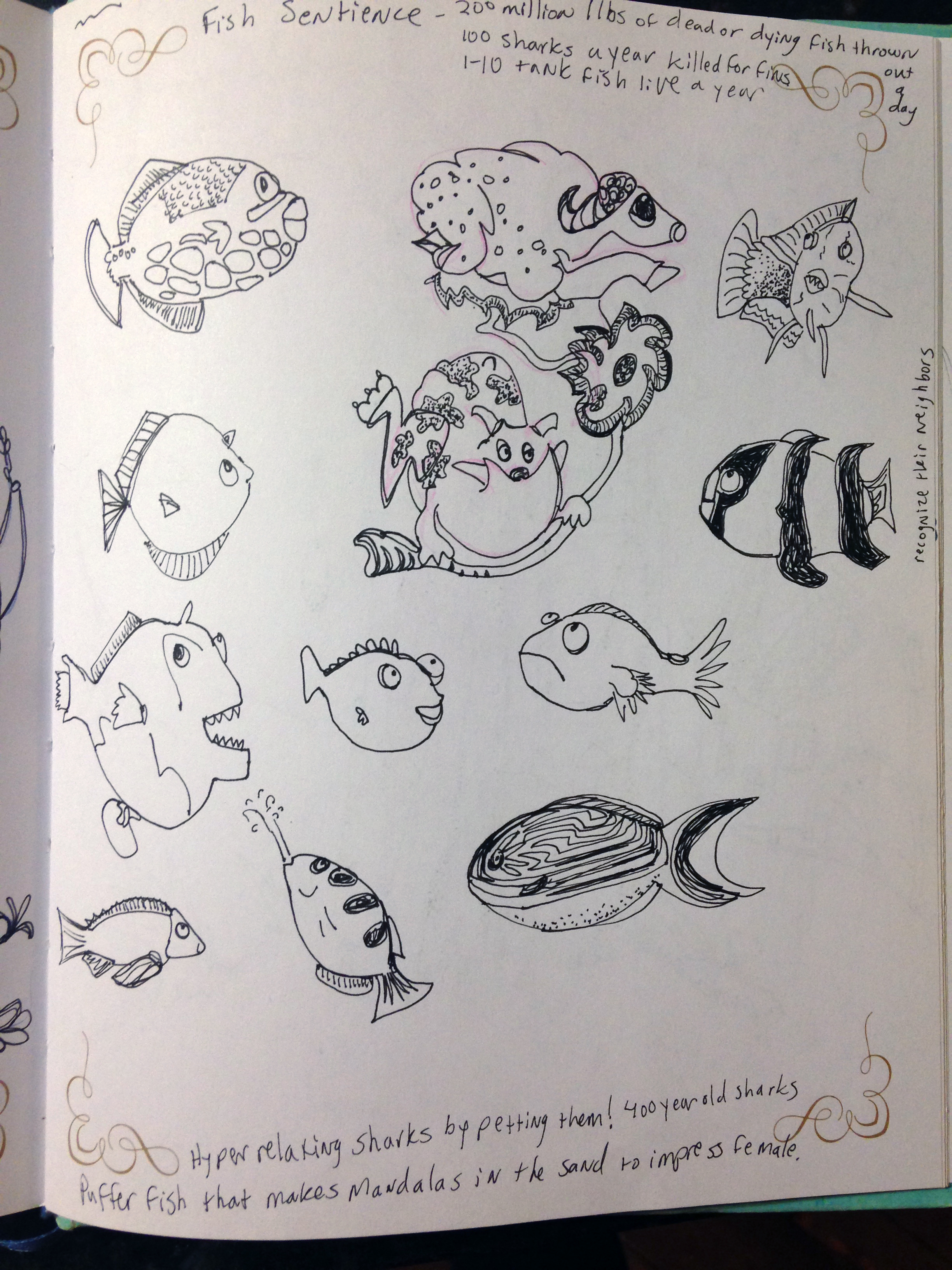 Fish Sketches during Dr. Jonathan Balcombe's talk