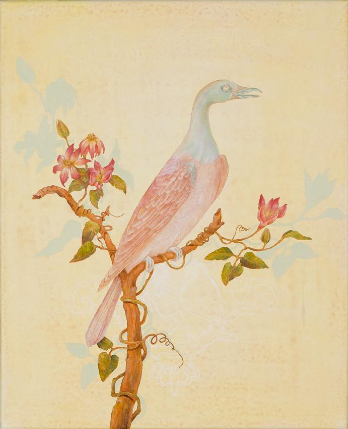 Unknown norfolk island pigeon copy.jpg