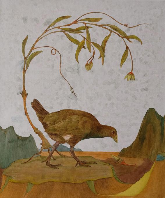 tasmanian native hen Billardiera fusiformis copy.jpg
